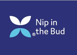 NitB_Logo-r2